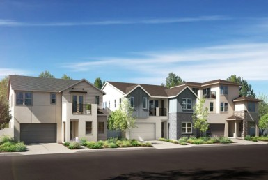 Apex at Rise by Pulte Homes-1