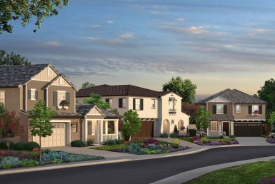 Saddle Creek by Brandywine Homes-1